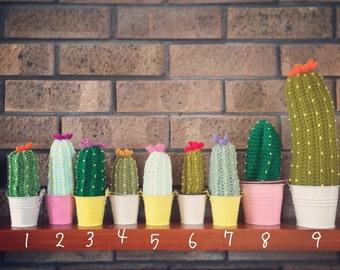 Crochet, knit cactus. House warming, anniversary gift. Amiguarmi. Home, office, nursery decoration. UK seller. Choose your colour