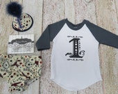 Boys First Birthday Party Pack Set With Hat Bow Tie Diaper Cover and Graphic 3/4 sleeve Tee in Vintage Airplanes Cream Maroon Navy Gray