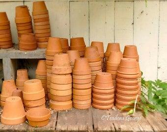 Garden Pottery Fine Art Photo Print, Garden Photography, Clay Pots