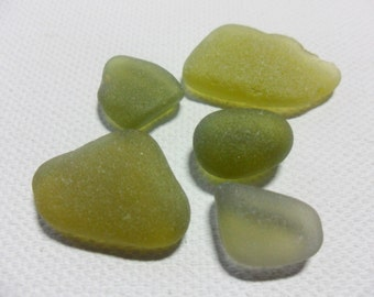 Lovely olive green sea glass collection - Lovely English beach find pieces