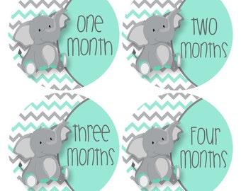 Elephant Monthly Stickers, Aqua, Baby Sticker Teal  Elephant Baby Photo Props, Elephant Nursery Decor, Chevron Bodysuit Sticker (542)