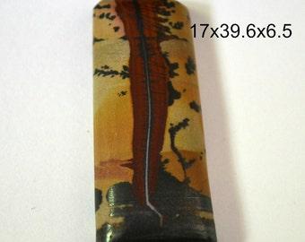 Indian Paint stone cabochon.  17 x 39.6 x 6.5