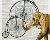 TECHNICIAN ELEPHANT bicycle art print poster illustration dictionary art animals wall decor hobby giclee