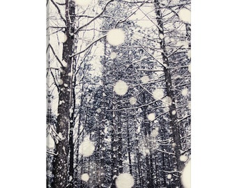 iCanvas Into The Woods Gallery Wrapped Canvas Art Print by Chelsea Victoria