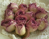 Romantic Air Dried Lavender Hybrid Tea Rose Heads Set Of 12 From SincerelyRaven On Etsy