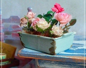 Beautiful Blooms in a cooking pot