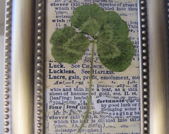 "Vintage Four Leaf Clover Print Good Luck Four Leaf Clover Vintage Botanical Saint Patricks Day Brass Frame, 3 3/4"" x 4 1/2"""