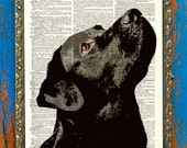 I Love My Labrador Original Pet Lover Print on an Antique Unframed Upcycled Bookpage