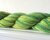 "Hand Dyed Alpaca Nylon 3ply Yarn 104g 400 yards ""Grantchester Meadow"""