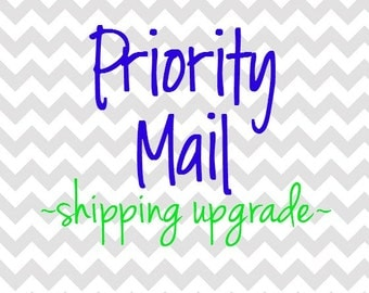 SHIPPING UPGRADE - Priority Mail Shipping Upgrade - Faster Shipping - Add to any clothing purchase - US Only