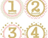 Baby Monthly Milestone Growth Stickers Gold Glitter Light Pink Dots Chevrons Nursery Theme MS001 Baby Shower Gift Baby Photo Prop