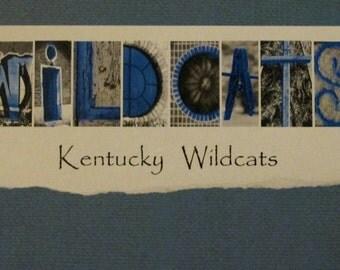Kentucky Wildcat UK Photo Framable Print