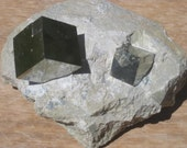 Pyrite Cubes display - mineral specimen