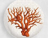 red coral melamine plate