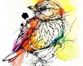 "Rufous Whistler- Watercolor Bird Original Painting 5""x7"""