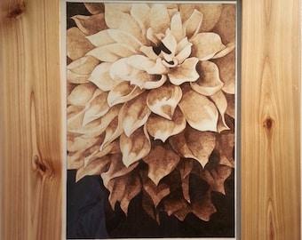 Woodburn art The Flower, Burning on paper, Pyrography, Chrysanthemum
