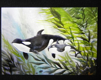 Mother Orca 5x7 inch print