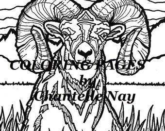 Bighorn sheep Etsy