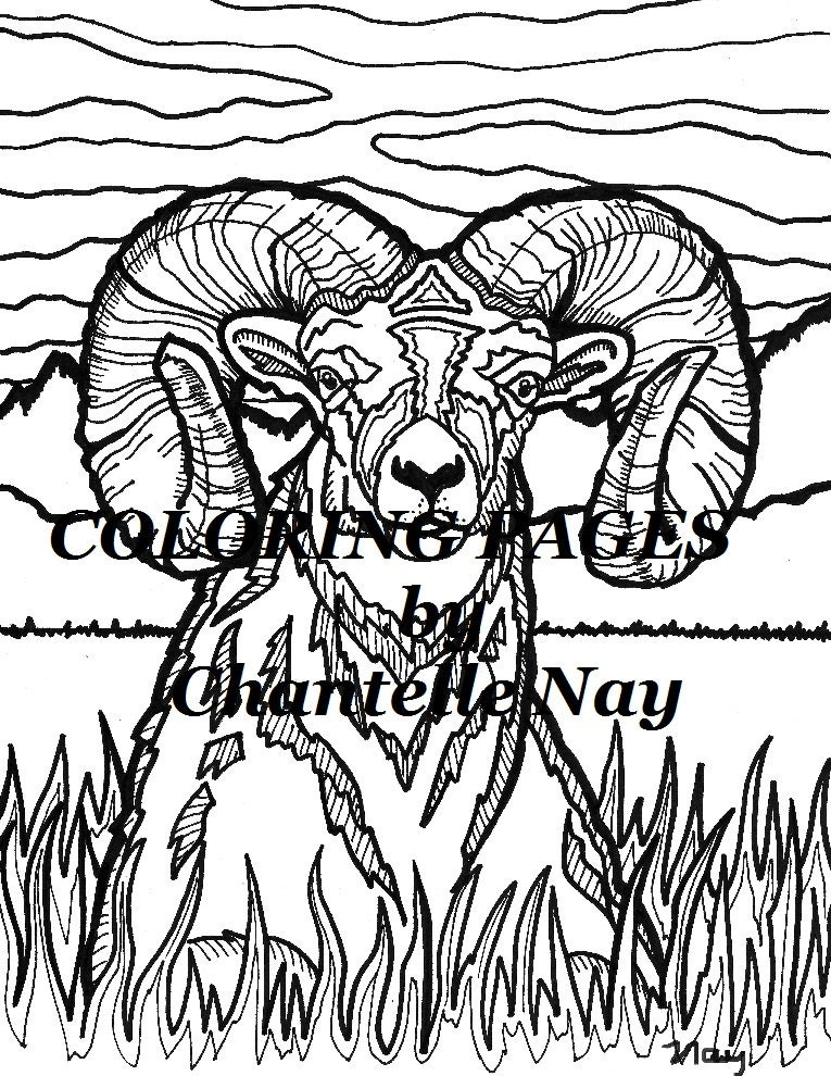 Bighorn Sheep Coloring page adult coloring picture animals