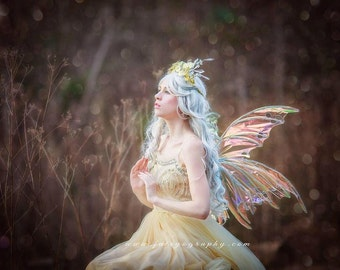 Large Fairy wings
