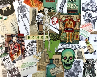 Halloween Inspiration*Anatomy Lessons*Vintage Halloween Paper Pack