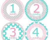 SALE Set of 12 Round Monthly Stickers Pink, Aqua & Gray Dots and Damask Circles Photo Props Keepsakes - MOSG017