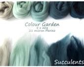 Green/blue Merino Shade sets - 21 micron Merino wool - 100g - 3.5oz - 5 x 20g - Colour Garden - SUCCULENTS