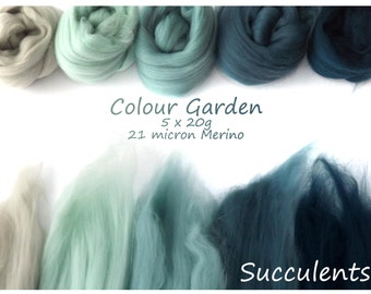 Green/blue Merino Shade sets - 21 micron Merino wool - 100g - 3.5oz - 5 x 20g - Colour Garden - SUCCULENTS