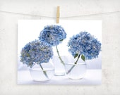 floral photography, botanical, hydrangea flower, blue white, california, summer, home decor, wall art