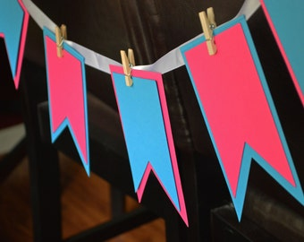 Gender Reveal Party Banner: Pink and Blue Banner