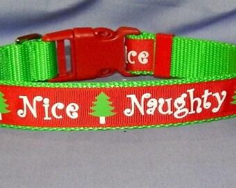 Naughty and Nice dog collar