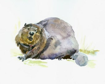 Beaver original watercolor painting 10 X 8 in beaver art, animal art, wildlife painting