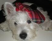 Royal Stewart Tartan Dog  Tam, Dog  Hat ,Dog  Plaid hat .Scottish Dog  Tam, Scottish Hat