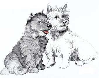 Scottie dogs illustration, pen and ink.  Birthday card or greeting card