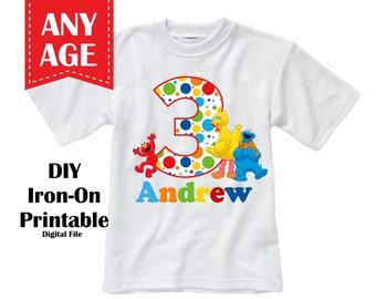 Printable - Sesame Street Birthday Iron On Transfer Personalized Name - Digital File