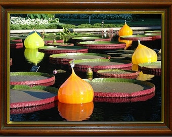 Fine Art wall print of water lillies and glass