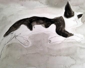 Print of the original watercolor painting 'Greek cat'