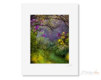Morning Walk in Fairyland