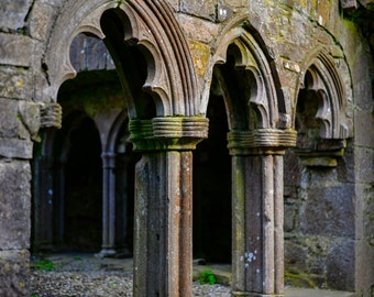 Bective Abbey Monastery, Ireland