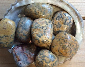 Leopard Jasper Large Tumbled Stone, Healing Stone, Healing Crystals,Chakra Stone, Spiritual Stone