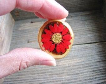 Red Flower Magnet, Wood Magnet, Real Pressed Flower Magnet, Nature Lovers Gift, Minimalist Kitchen Decor, Refrigerator Magnet