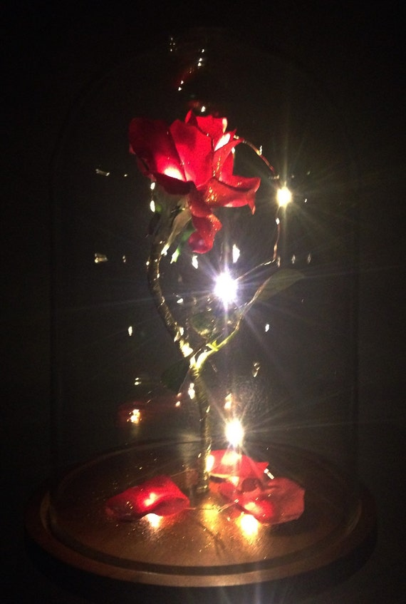 ... Sized Enchanted Magical Rose from Beauty and the Beast Valentine's Day