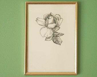 """Rose Botanical Illustration mini print (5x7"""")"""