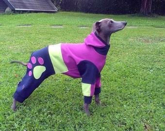 Italian Greyhound Knit Pajamas / Italian Greyhound Sweater / Italian Greyhound Tracksuit