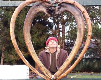 Pair of graduated hearts. Heart within a heart. Made from old growth red cedar