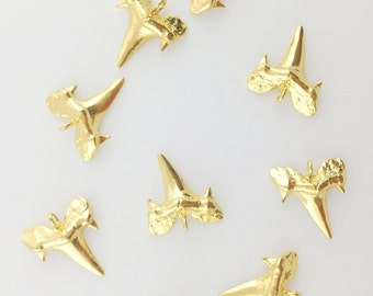 Shark Tooth Charm // Gold Finish // BBB Supplies // Combo Bracket 5 {CG094}