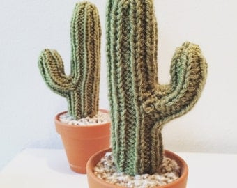 Knit Cactus - with arm!
