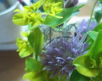 Vintage Map Butterfly Confetti - Devon Cornwall