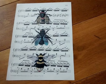 Vintage style bees print on vintage sheet music