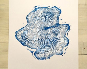 Blue Alaskan Cypress, Original Tree Ring Print